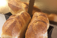 Seven grain whole wheat